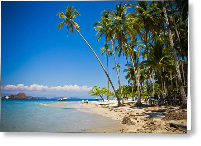 White Sand Beach Greeting Card by Anthony Doudt