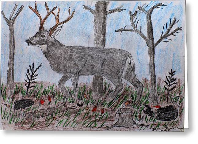 Whitetail Deer In A Meadow Greeting Card