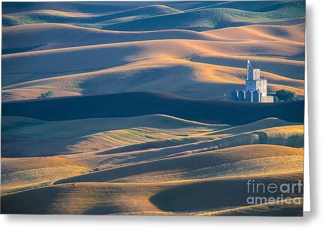 Whitman County Grain Silo Greeting Card by Sandra Bronstein