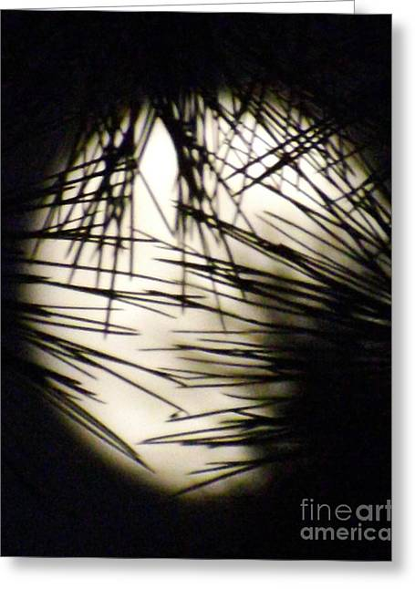 Wicked Moon Greeting Card by Gary Brandes