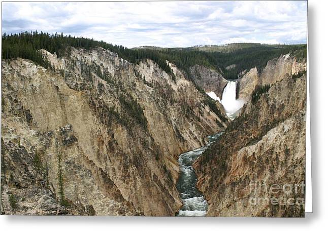 Wide View Of The Lower Falls In Yellowstone Greeting Card by Living Color Photography Lorraine Lynch