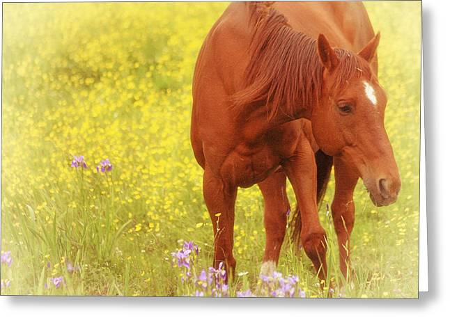 Wild As The Flowers Greeting Card