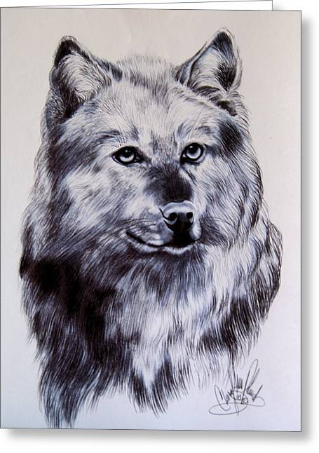 Wild Canines Greeting Card by Cheryl Poland