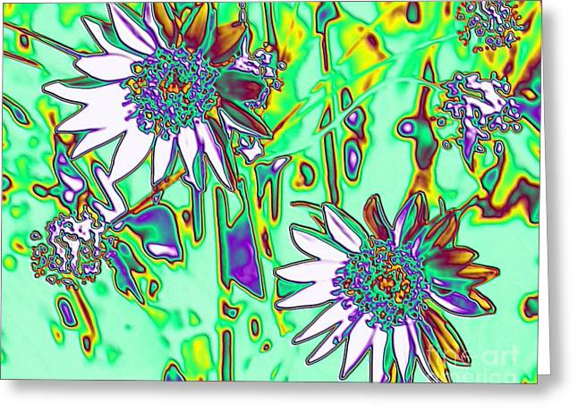 Wild Daisies Greeting Card by Denise Oldridge