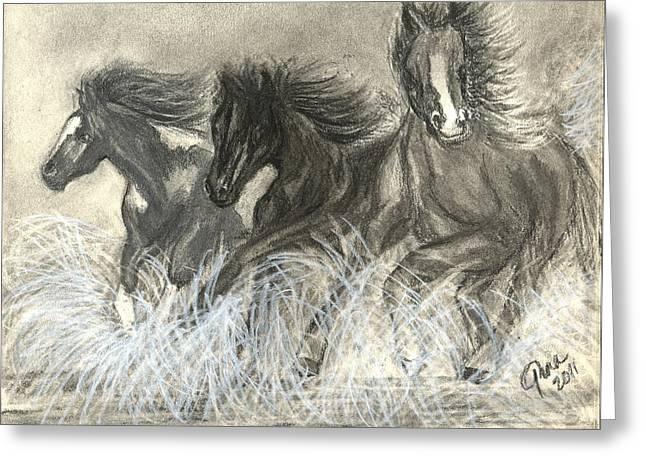 Wild Horses Run Greeting Card by Gina Cordova