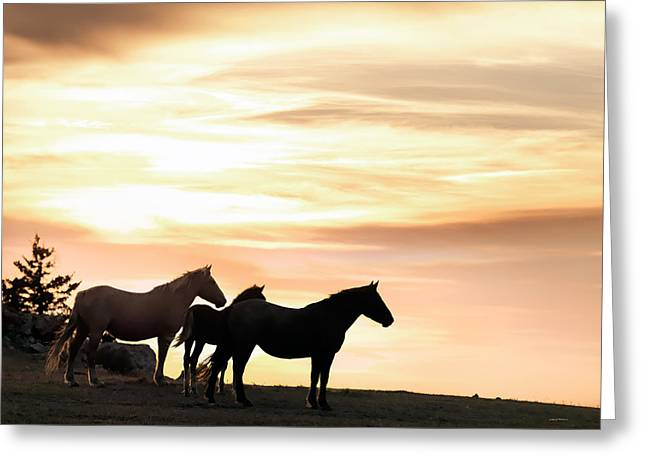 Wild Horses Sunset 3 Greeting Card by Leland D Howard
