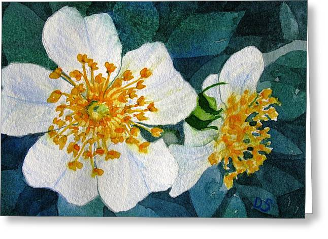 Wild Roses Greeting Card by Debra Spinks