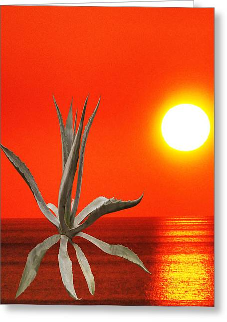 Wild Thing Greeting Card by Eric Kempson