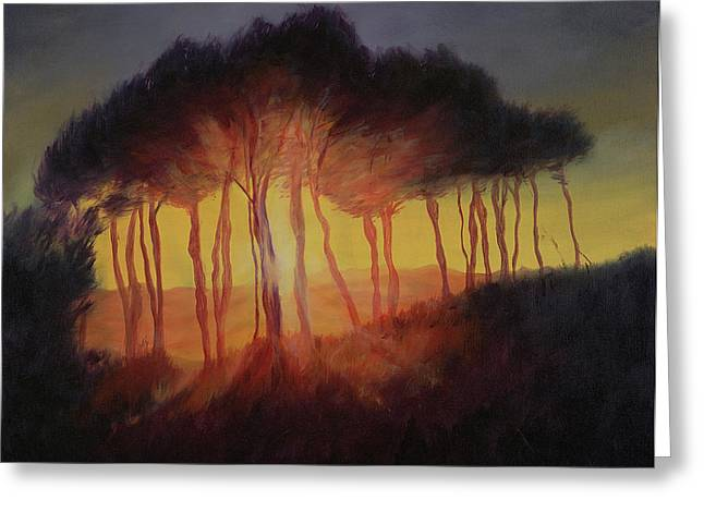 Wild Trees At Sunset Greeting Card