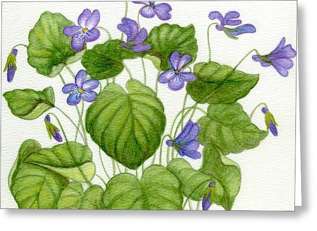 Wild Violets Greeting Card by Becky Yates