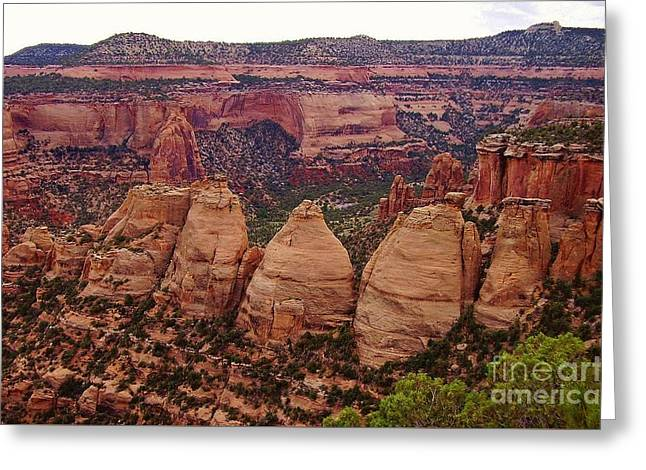 Colorado National Monument  Greeting Card by Patricia Kertson