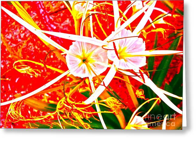 Wildflower Sea Greeting Card by Chuck Taylor