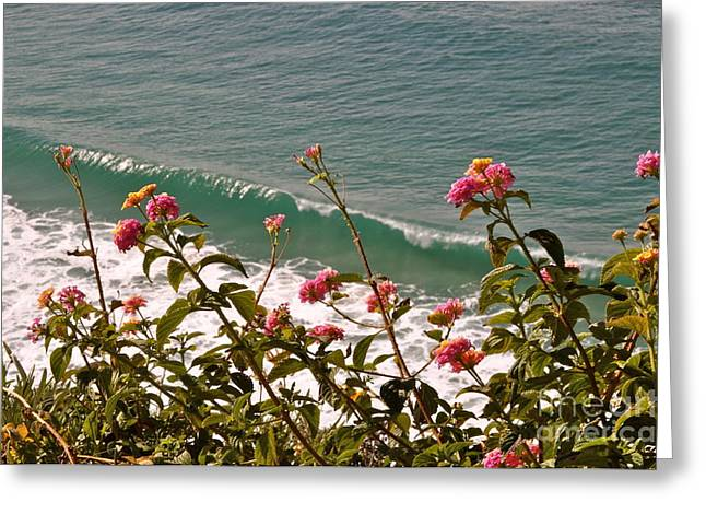 Greeting Card featuring the photograph Wildflowers And Waves by Johanne Peale