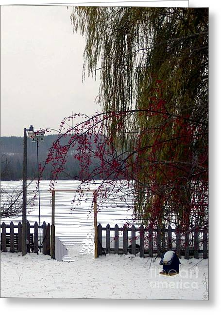 Willows And Berries In Winter Greeting Card by Desiree Paquette
