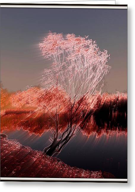 Greeting Card featuring the photograph Wind by Irina Hays