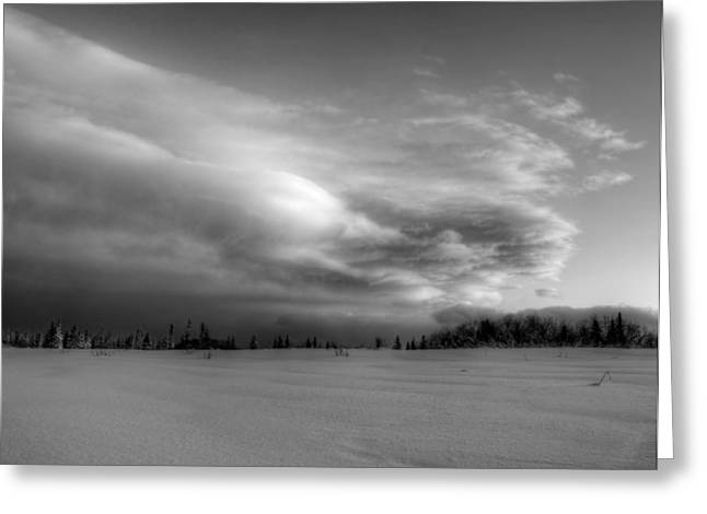 Greeting Card featuring the photograph Windblown Cloud by Michele Cornelius