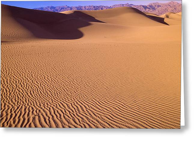Windblown Patterns In The Sand Greeting Card by Pete Ryan