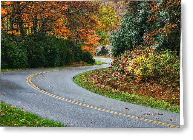 Greeting Card featuring the photograph Winding Road by Joan Bertucci