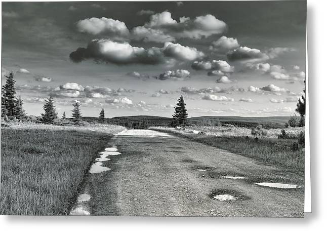 Greeting Card featuring the photograph Winding Road by Mary Almond