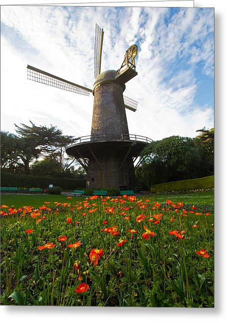 Windmill And Poppies Greeting Card