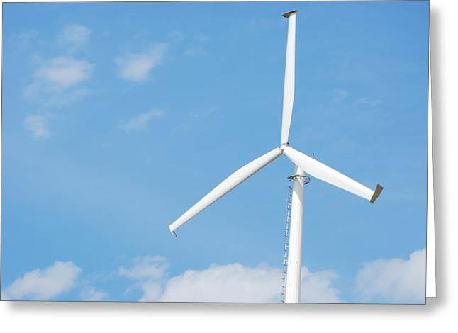 Windmill Greeting Card by Kim French