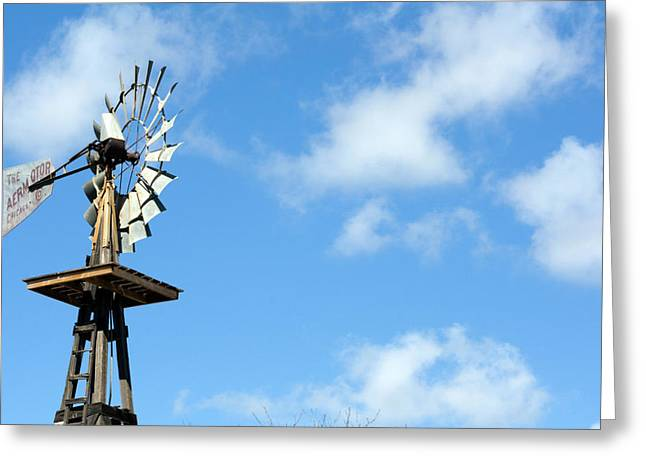 Windmill Greeting Card by Terry Thomas
