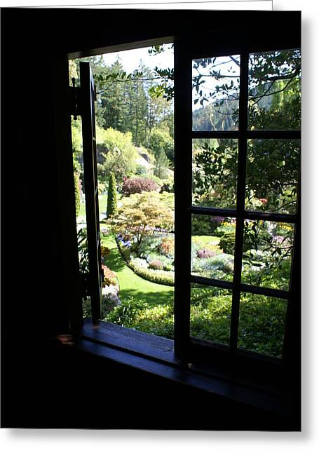 Greeting Card featuring the photograph Window Garden by Jerry Cahill