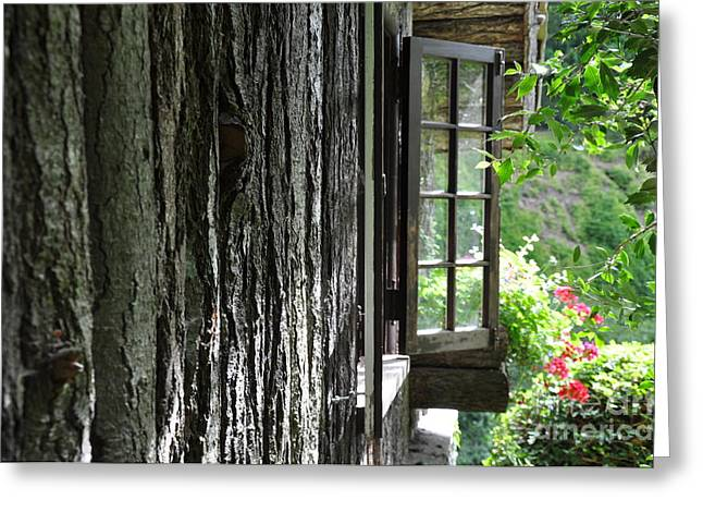 Window To The Graden Greeting Card by Tanya  Searcy