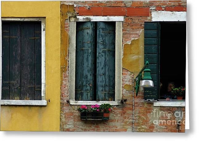 Window Wall Venice Greeting Card by Bob Christopher