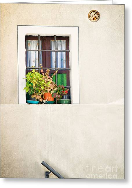 Window With White Frame And Vases Greeting Card by Silvia Ganora