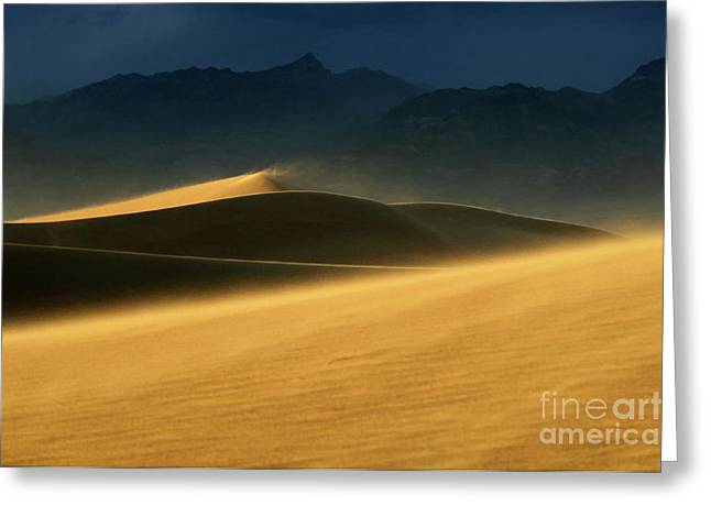 Death Valley Windswept Dunes Greeting Card