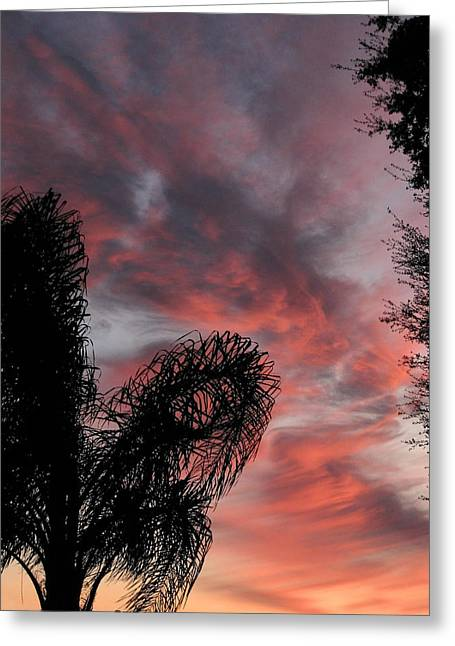 Windswept Clouds Greeting Card