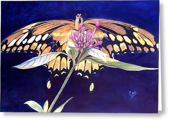 Wings Greeting Card by Karen Casciani