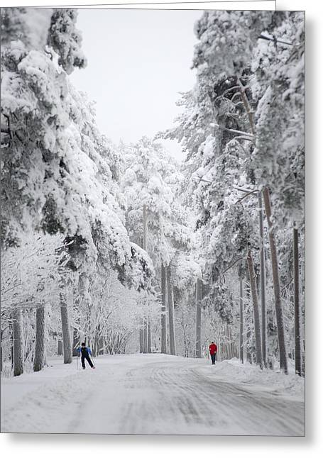 Winter Activities Greeting Card