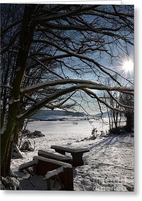 Winter Beauty 2 Greeting Card by Bruno Santoro