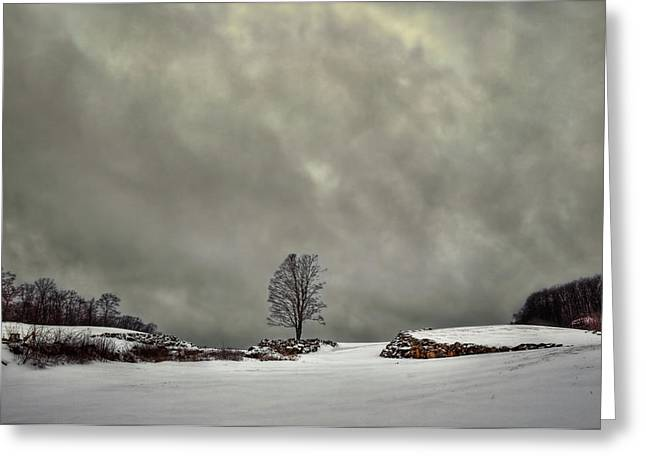 Winter Blues Greeting Card by Evelina Kremsdorf