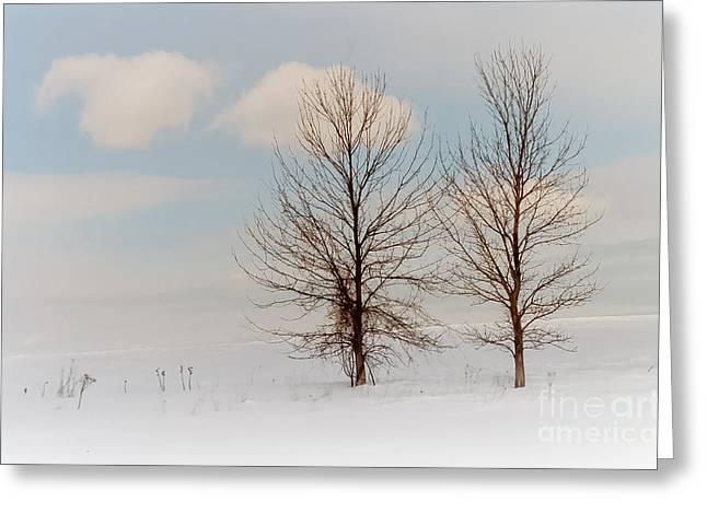 Winter Companion Greeting Card by Ken Marsh