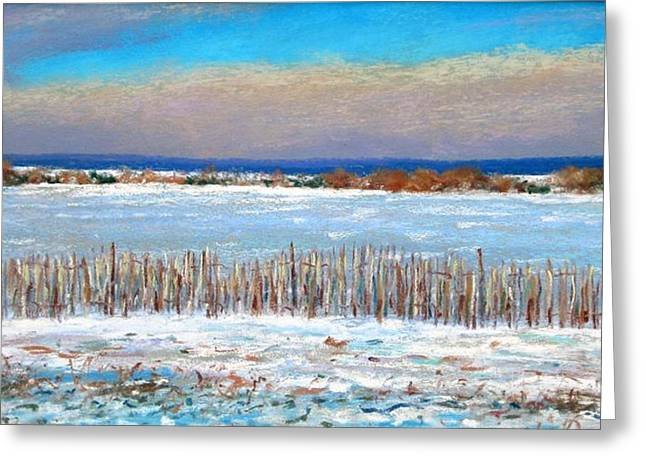 Winter Fields With Snow Fence Greeting Card by Bob Richey