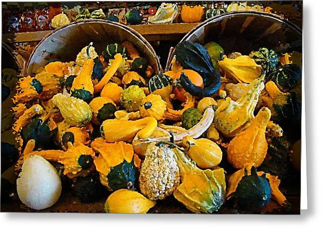 Winter Gourds  Greeting Card by Nick Kloepping