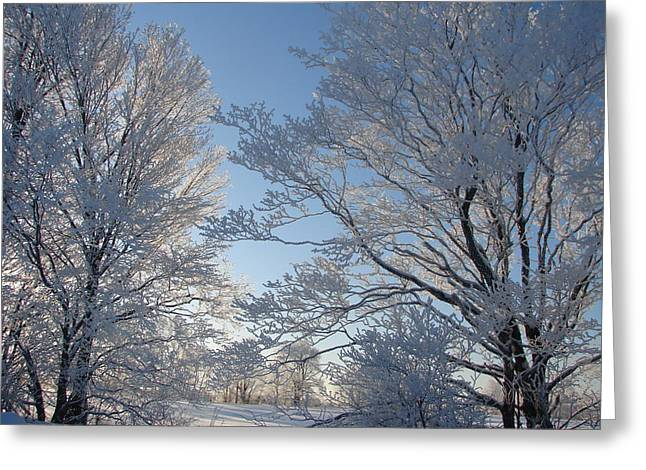 Winter Ice Greeting Card