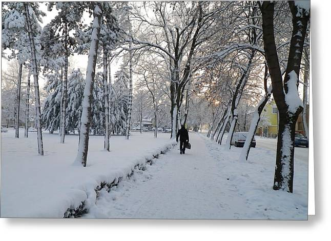 Greeting Card featuring the photograph Winter In Mako by Anna Ruzsan