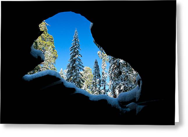 Winter Inside Out Greeting Card