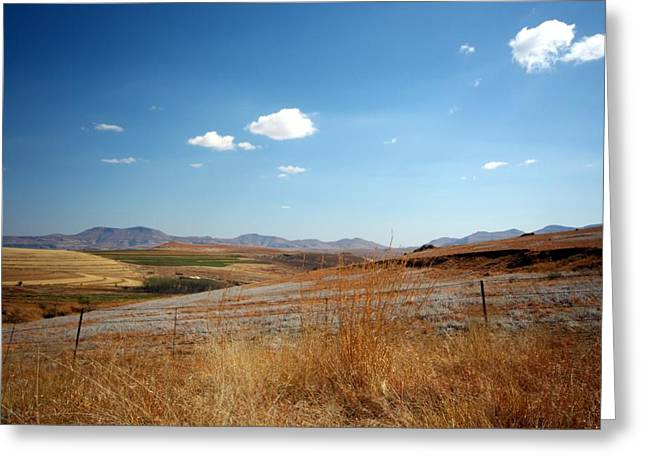 Winter Landscape In South Africa Greeting Card by Riana Van Staden