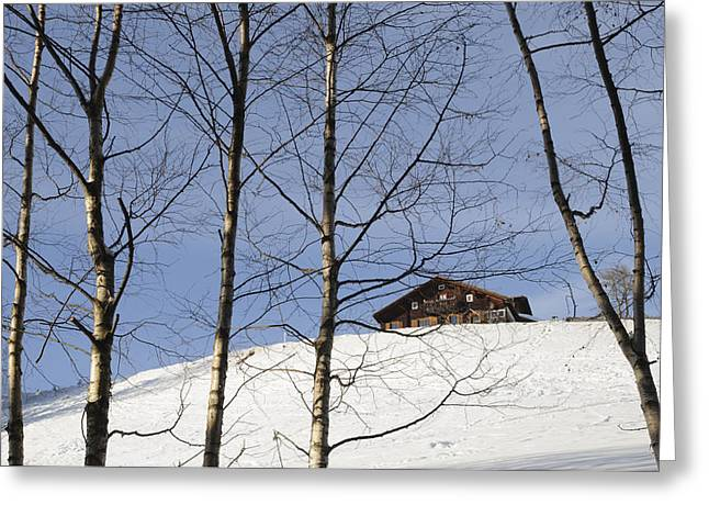 Winter Landscape With House And Trees Greeting Card