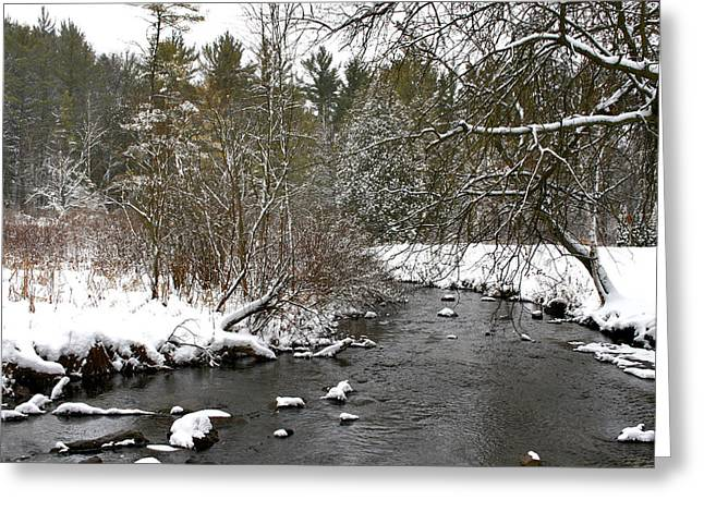 Winter On Bear Creek Greeting Card
