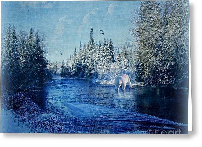 Winter Paradise Greeting Card by Lianne Schneider