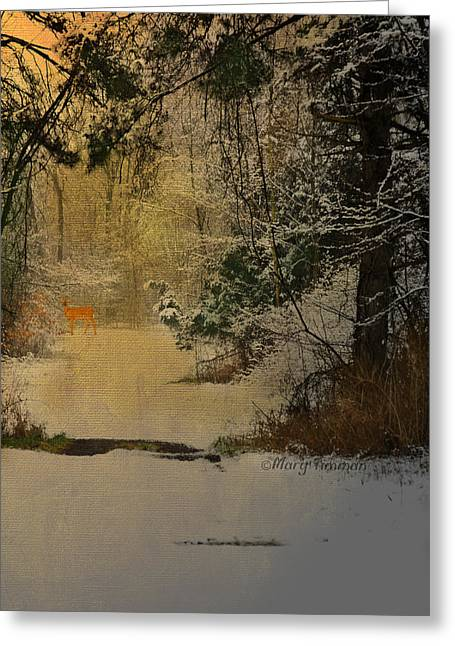 Greeting Card featuring the photograph Winter Path by Mary Timman