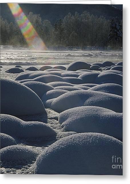 Winter Ray Greeting Card by Elena Filatova