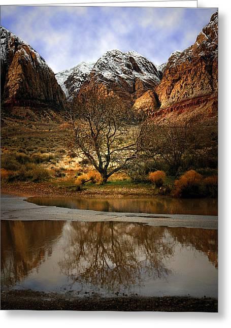Winter Reflections Greeting Card by Nabila Khanam