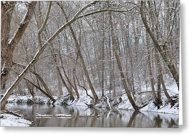 Winter River Reflection 1 Greeting Card by Tina Jones